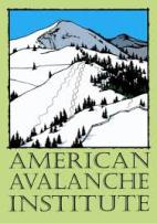 American Avalanche Institute